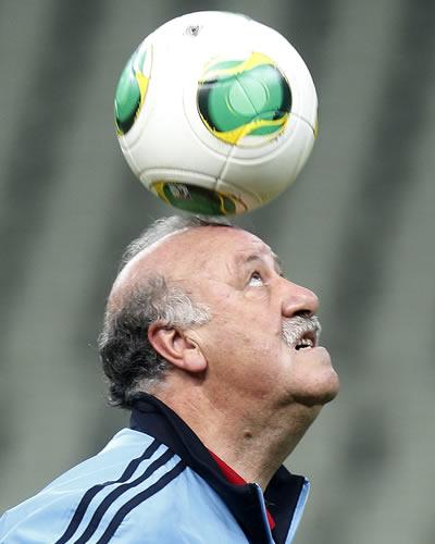 El seleccionador de España, Vicente del Bosque. Foto: EFE