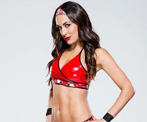 WWE: Brie Bella se retira de la lucha libre